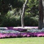 Parque de El Capricho (4)