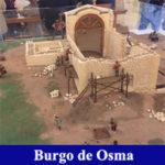 Visita guiada Burgo de Osma